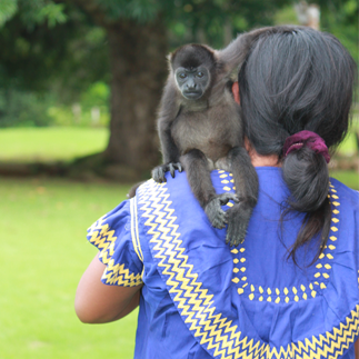 Woman with ponytail and monkey on her shoulder